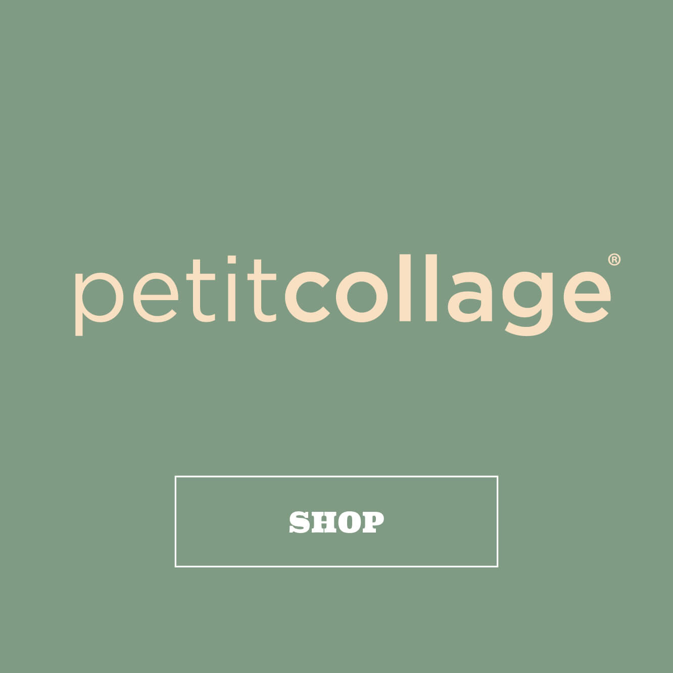 Shop Petit Collage by Wild & Wolf